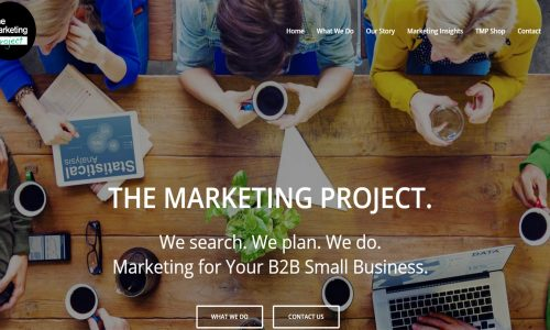 the-marketing-project